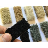 Free - Floor Mat Carpet Color Samples